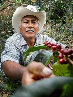 Coffee Farmer - Clay Enos Photography