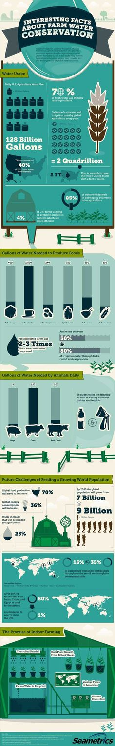 The Agricultural & Water Conservation Conversation | Interesting facts about how much water farms, livestock and produce are really using up. The results may surprise you. by Pioneer Settler at http://pioneersettler.com/agricultural-water-conservation/