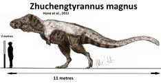 Zhuchengtyrannus magnus (updated) by Teratophoneus on DeviantArt