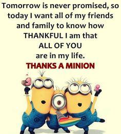 Love the Minions
