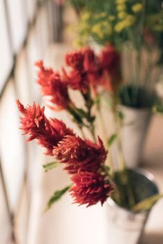 UO Happenings: Flower Arrangement and Natural Dye Workshop with Stems Brooklyn and Beezie Textiles