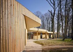 A wavy roof shelters paths and patios as it meanders through the woodland surrounding this timber-clad school.