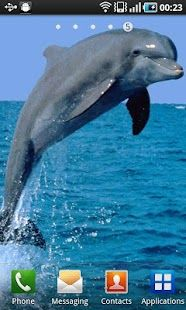 Top Android Dolphin – Dolphin Free Download