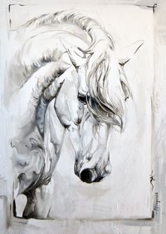 Abstract Horse Painting, Horse Sketch, Horse Artwork, Horse Drawings, Equine Art, Animal Paintings, Illustration Art, Canvas Art, Horses