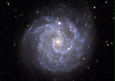 Gangly Spiral Galaxy NGC 3184