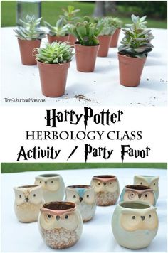 The Ultimate Harry Potter Birthday Party Ideas, DIY and Crafts, Harry Potter Herbology Class Party Favor - Lots of great ideas for a Harry Potter party. Classe Harry Potter, Cumpleaños Harry Potter, Harry Potter Cosplay, Harry Potter Wedding, Harry Potter Birthday, Harry Harry, Harry Potter Recipes, Harry Potter Plants, Harry Potter Mandrake