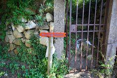 Paesaggi Ischitani - Monte di Panza