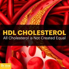 Understanding cholesterol cholesterol blood test normal range,hdl cholesterol and ldl cholesterol high cholesterol levels chart,natural treatment for cholesterol foods to eat to lower your cholesterol. Coconut Oil Cholesterol, What Causes High Cholesterol, Cholesterol Symptoms, Cholesterol Lowering Foods, Cholesterol Levels, Lipid Profile, Dr Axe, Smoothie, Smoothies