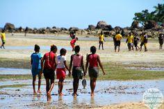 Voyages et Expériences dans les îles: Madagascar: Nosy Komba, récolter, pêcher, cuisiner à Anjiabe