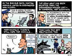 Open Season on the Gray Wolf  Wednesday, June 1st, 2011 by Ted Rall    Open Season on the Gray Wolf    Gray wolves have been delisted from the Endangered Species List as the result of corrupt lobbying.