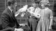 Prince Charles and Princess Anne being introduced to Cocky the cockatoo by David Attenborough David Attenborough, Princess Anne, Royal Princess, Uk Tv Shows, Prince Charles And Camilla, Bbc Radio 1, Dragon, Social Media Trends, Second Child
