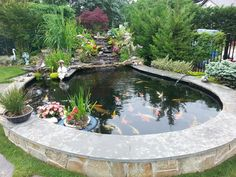 Achieve beautiful blue, healthy water with Organic Pond dyes and products! www.organicpond.com #GardenPond