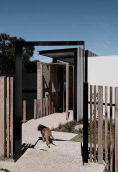 Located on a stunning corner site in the Mornington Peninsula, this modern coastal house uses contrasting materials in all the best ways. Modern Coastal, Coastal Style, Timber Ceiling, Australian Homes, Polished Concrete, Stunning View, Concrete Floors, Strip Lighting, House Colors