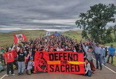 280 Nations Gathering Ideas Native American Wisdom Native American Quotes Native American