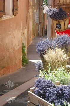 Like the use of bushel baskets for spring- fall display of flowers; (Lavender in Provence, France)