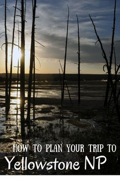 How to plan your trip to Yellowstone National Park - check our blog for tips and tricks!