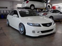 Slammed Acura TSX | ... of your Slammed TSX. - Page 25 - Acura TSX Club : Acura TSX Forum