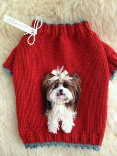 Small Dog Sweaters, Small Dog Clothes, Baby Sweaters, Pet Clothes, Doll Clothes, Crochet Dog Sweater, Sweater Knitting Patterns, Baby Knitting, Knit Crochet
