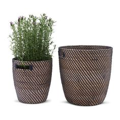 "RÅGKORN - IKEA. Plant pot - 12½ ""  Plastic inner pot makes container waterproof. Handles make it easier to move pot."