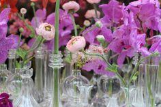 #Vanda #Orchid and #Ranuncules
