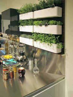 Herb shelves in kitchen
