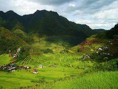 Tęcza nad tarasami ryżowymi Batad na Filipinach. Te pola uprawne zostały wpisane na światową listę dziedzictwa UNESCO/fot. Captaincid na licencji Creative Commons Attribution-Share Alike 3.0 Unported