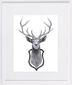 NZFINCH A4 stag head wallmounted digital print of original artwork