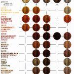 Hair Dye Rusk Color Education Chart