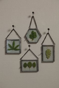 Brilliant.  $8 each and you can rotate new leaves in and out with the seasons.  Pinterest is being annoying and won't let me post from the website so here's the link below:  areohome.com