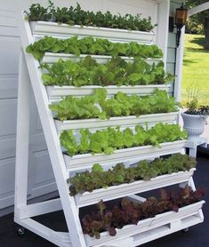 Gardening Diy Get more of the lettuce you love with a mobile vertical planter. - Make growing and harvesting greens easy when you build this handy vertical planter for your patio. Vertical Garden Diy, Vertical Planter, Easy Garden, Garden Tips, Cool Garden Ideas, Cool Ideas, Vertical Herb Gardens, Diy Garden Bed, Kitchen Garden Ideas