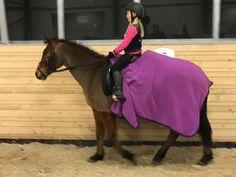 Heste « Mit Perfekte Uperfekte Liv