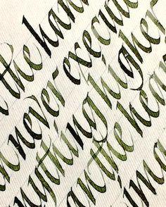 1,201 vind-ik-leuks, 19 reacties - Sachin Shah (@sachinspiration) op Instagram: 'My new olive ink #sachinspiration #calligraphy #handlettering #calligraphymasters #italic'
