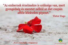 Victor Hugo idézete az érzelmekről. A kép forrása: Az Út a Boldogsághoz Magyarország