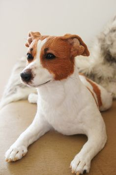 Needle Felted  - Jack Russell Terrier