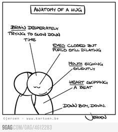 Anatomy of hug