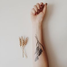 Image result for wheat and lavender sketch