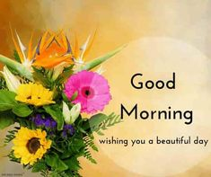 beautiful-good-morning-ecard-with-rose-flower