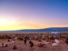 Mongolia, captured by one of our photographers.