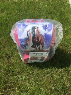 Lunch Box, Horses, Bento Box, Horse