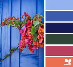 Bright color palette, spring color theme