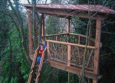 Seattle, WA  Summer 2005  This simple platform over a backyard ravine was built as a special gift for two young boys by their parents. Reclaimed wood, live cedar branch railing, and a rusty metal roof complete the look while the tire swing and cargo net complete the fun!