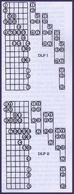 Play Lead Guitar Using Diatonic Patterns #guitarchords #pianoforbeginners Acoustic Guitar Notes, Music Theory Guitar, Jazz Guitar, Guitar Songs, Guitar Quotes, Guitar Chords And Scales, Guitar Chord Chart, Guitar Tabs, Ukulele
