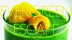 EVERGREEN ESCAPE SMOOTHIE RECIPE Summer is just around the corner and it is time for citrusy smoothie flavors. Today's recipe is a fruity blend with the creamy flavor of soy yoghurt.  Der Sommer steht vor der Tür und es wird Zeit für einen frischen Smoothie mit Zitrus-Geschmack. Das heutige Rezept ist ein fruchtiger Mix mit der cremigen Note von Sojajoghurt.   #greensmoothie #greensmoothies #grünersmoothie  #grünesmoothies #vitamins #fruits #veggies   #vegetable   #vegetables…