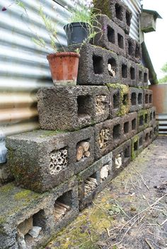 Our Insect Hotel. Made from old hollow concrete blocks and found natural materials.Bug hotel.  Insect home.