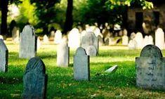 Dosis De Optimismo Para Tu Día | Espiritualidad Being A Landlord, Birds In Flight, Cemetery, Garden Sculpture, Stock Photos, Stone, Outdoor Decor, Graveyards, Vineyard