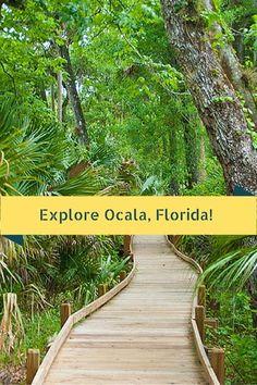 A Hidden Gem: Ocala, Florida - Traveling Mom Places In Florida, Visit Florida, Florida Living, Florida Vacation, Florida Travel, Florida Beaches, Travel Usa, Florida Trips, Viajes