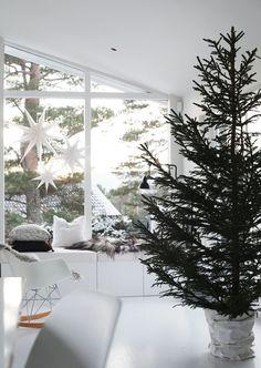 01. julgran-minimalistisk