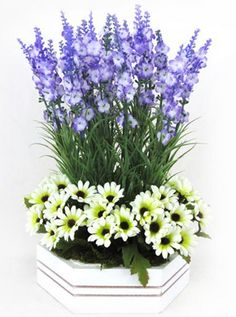 Bring out sacredness to any place with a white lavender flowers bouquet that symbolizes delicateness, grace and beauty! Through Real Flowers, you can receive them at your doorstep in an easy manner. Order now! Lavender Flowers, Real Flowers, Flower Delivery, Manners, Dubai, Special Occasion, Bouquet, Floral, Easy