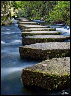Llovizna Park, Guayana City, Venezuela  Stepping Stones by Jase036