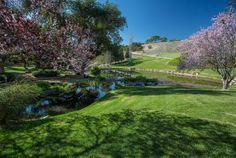 7003 Foxen Canyon Rd, Los Olivos, CA 93441 | MLS #14-705 - Zillow